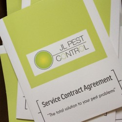 JL-Pest-Control-Brighton-Sussex